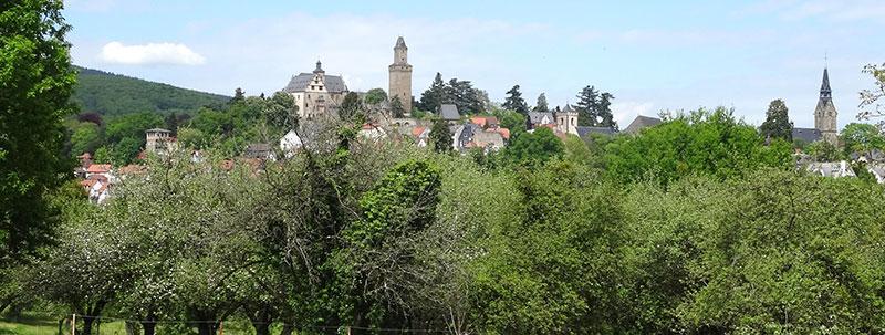 Immobilien Bauen · Blick auf Burg Kronberg (im Taunus)
